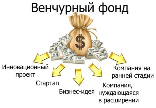 Подробно о том что такое венчурный инвестиционный фонд